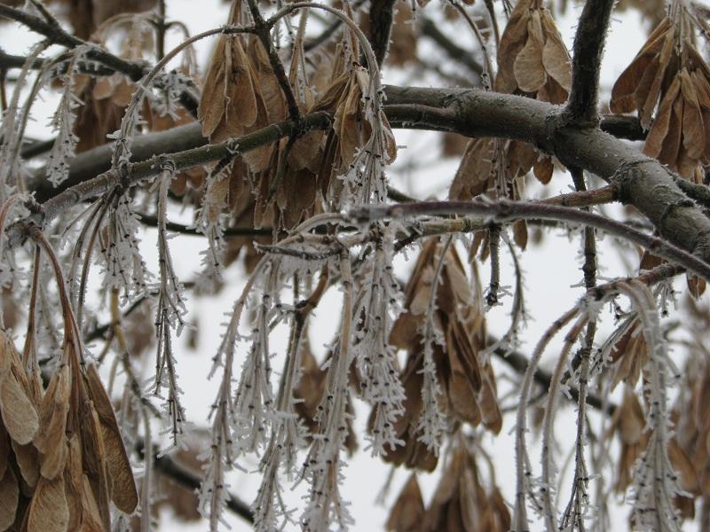 Színek és formák télen