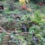 Kedvenc -szolnoki kertészet- sziklakertben otthon vagyunk