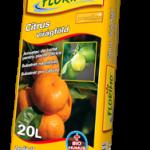 citrus virágföldek