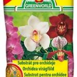 orchidea virágföldek