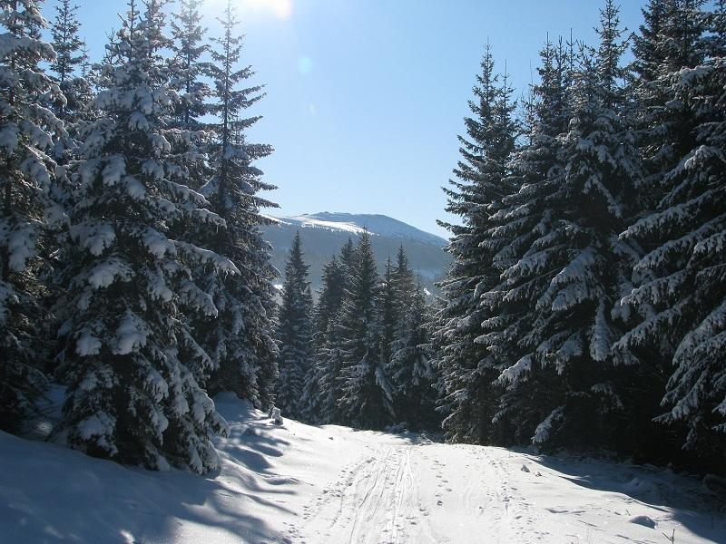 téli szünet