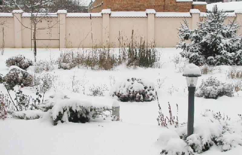 A hó leple alatt téli álmát alussza a kerti tó
