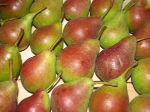Talajjavítás, trágyázás = gazdag termés