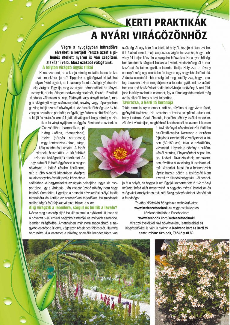 Megjelent cikkünk a nyári Presztízs magazinban!