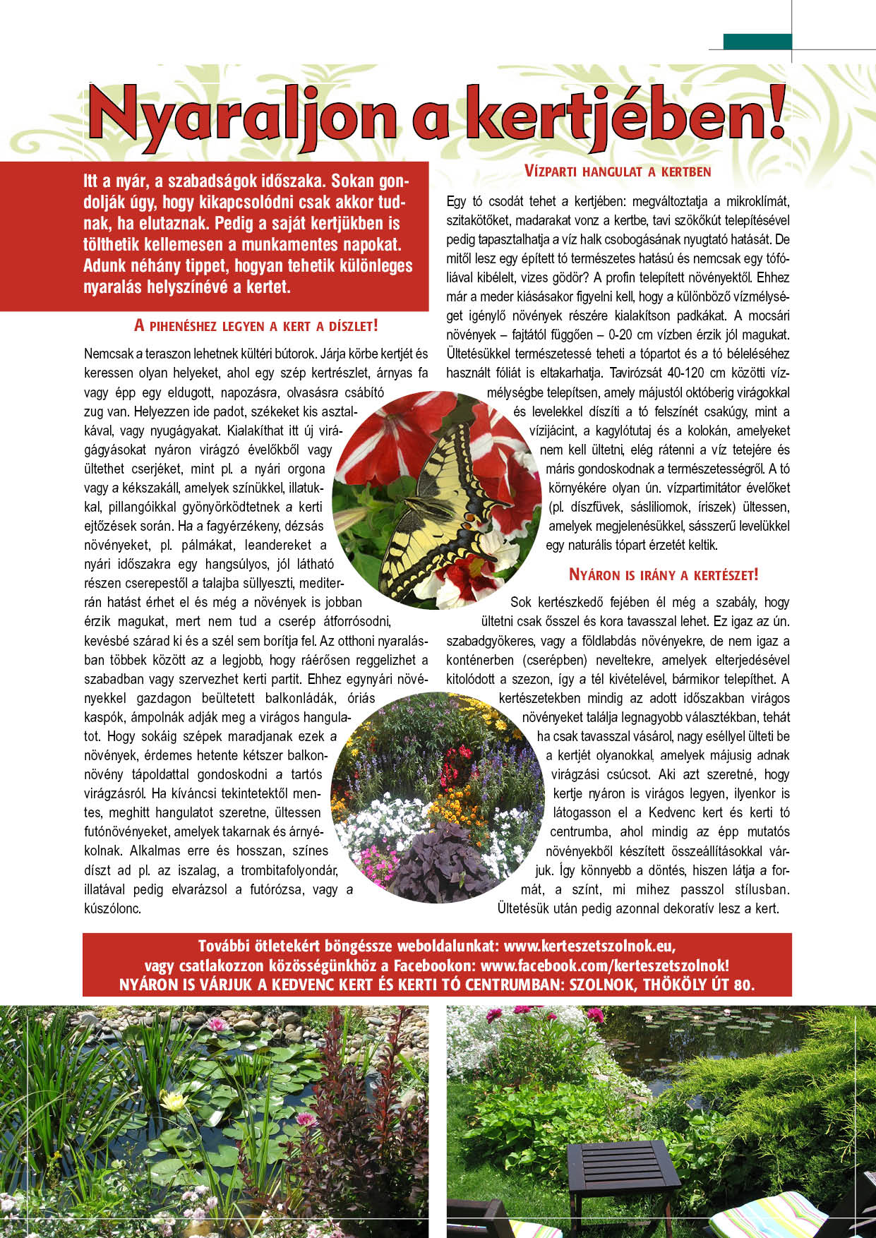 Augusztusban a kertről Archives - Kedvenc kert és kerti tó centrum a9a25806e1