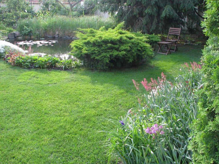 Őszi cikkünk kertészkedőknek a Presztízs magazinban