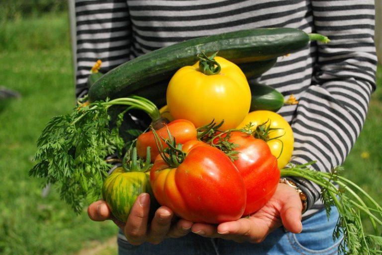Tavaszi kertészeti cikkünk a Presztízs magazinban