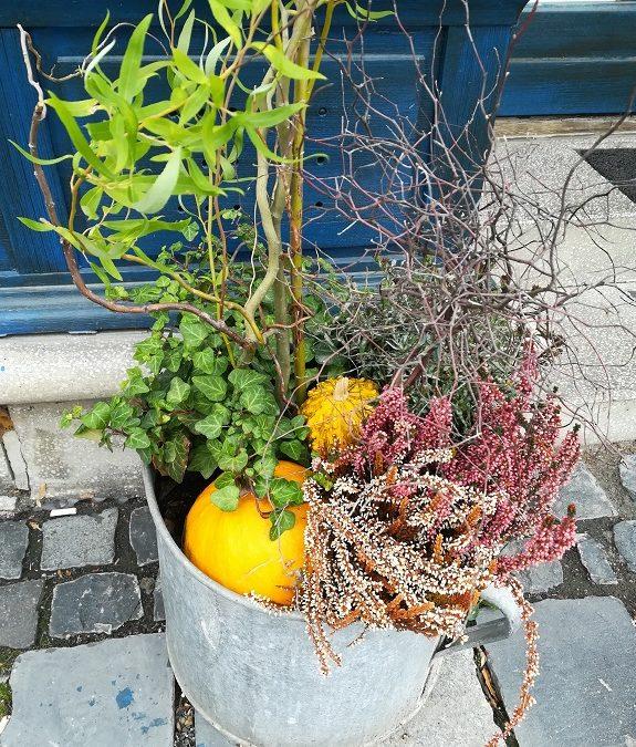 Egyszerű őszi dekoráció ősszel díszítő növényekkel, termésekkel, ágakkal