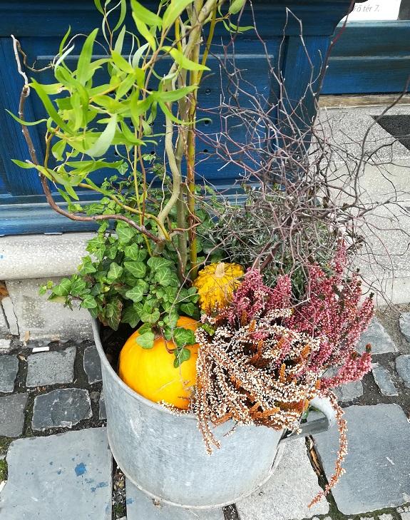 Ősszel díszítő növények a kertben